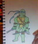 Leonardo - colored