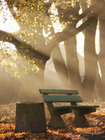 Fall in the park by Fynal666