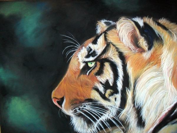tiger 2 by Tomek3618