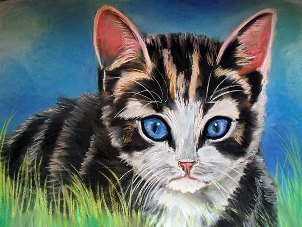kitten 7 by Tomek3618