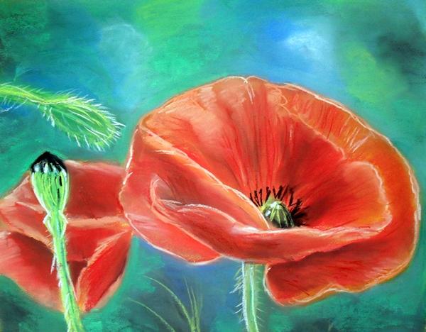 poppy seed 2 by Tomek3618