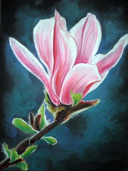 Flowers 2 by Tomek3618
