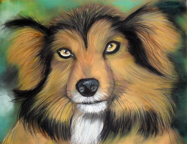 dog by Tomek3618