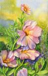 Summer Flowers 2