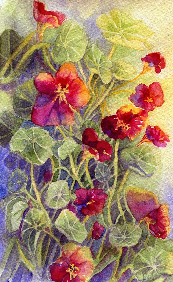 Summer Flowers 3 by Til-Til