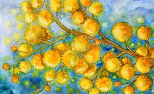 Spring Flowers 1 by Til-Til