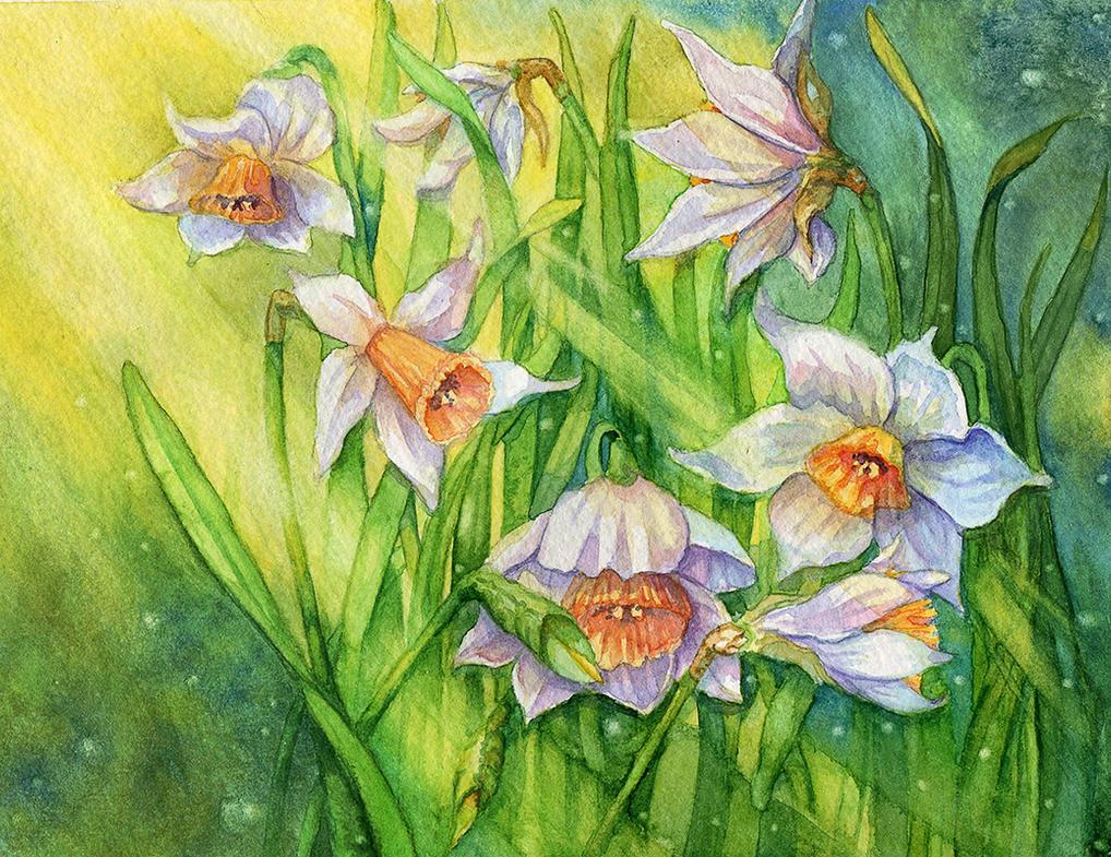 Spring Flowers 3 by Til-Til