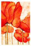 Color Ink 4 - Scarlet Poppies