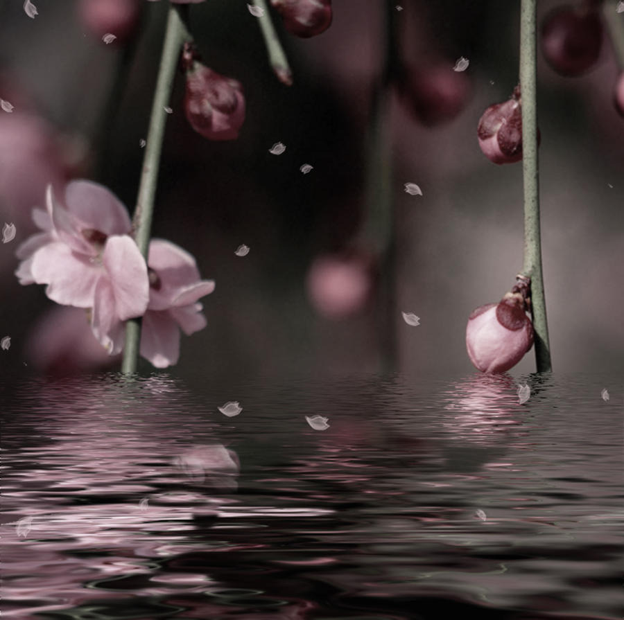 Fantasia floral by Marazul45
