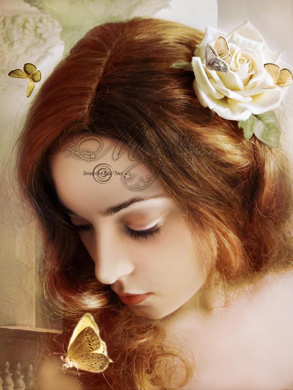 Mariposas ...y una rosa by Marazul45