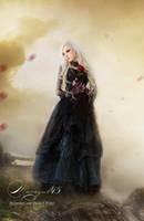 Primer plano una rosa para ti primer plano by Marazul45
