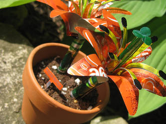 Recycled Orange Lily Duo 2 by Christine-Eige