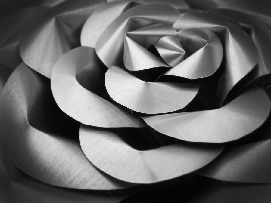 Soda Can Rose - Close Up by Christine-Eige
