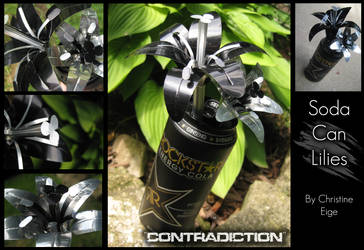 Soda Can 'Contradiction' Full by Christine-Eige