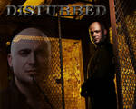 David Draiman - Indestructible