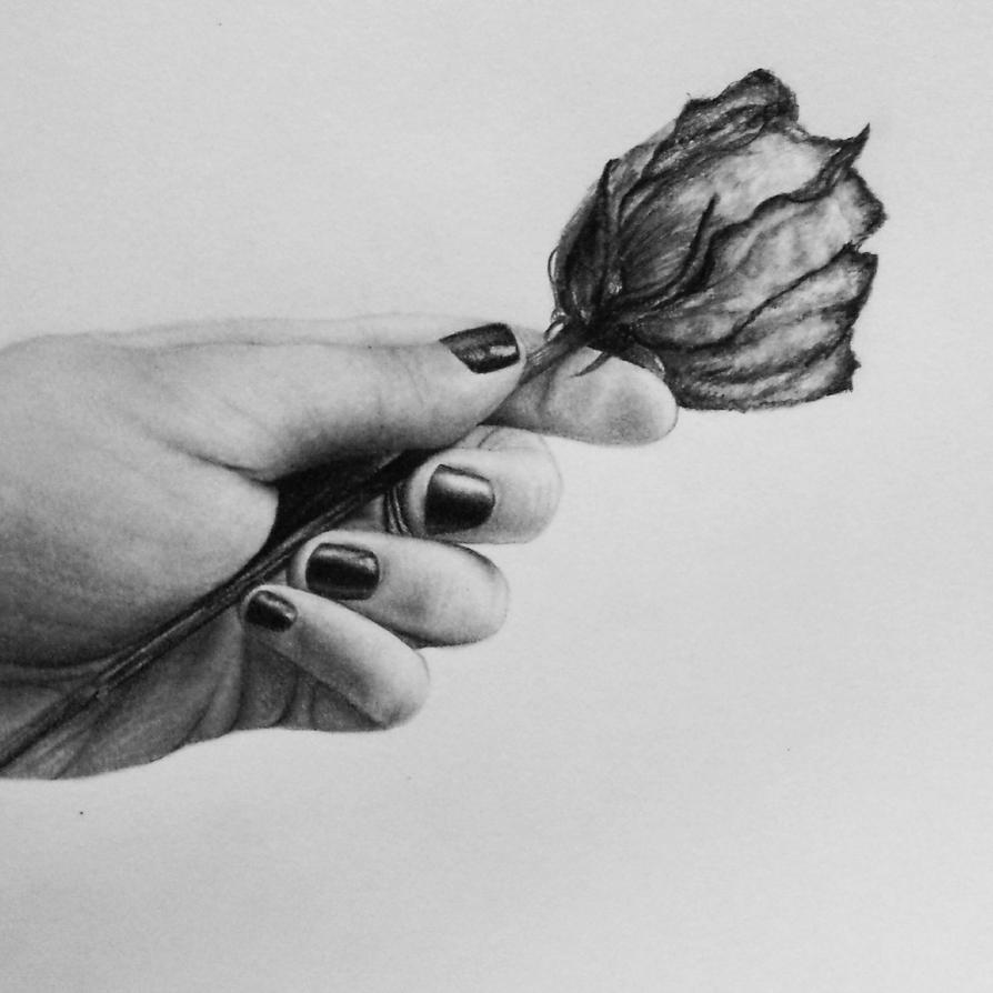 Drawing of Hands Holding Hand Holding a Rose by
