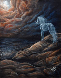 Nocturne by Ferluner