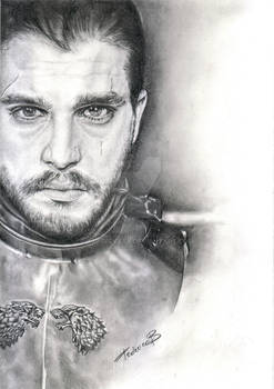 Jon Snow - The King in the North