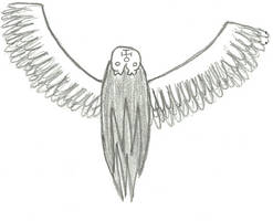 Chaotic Angel