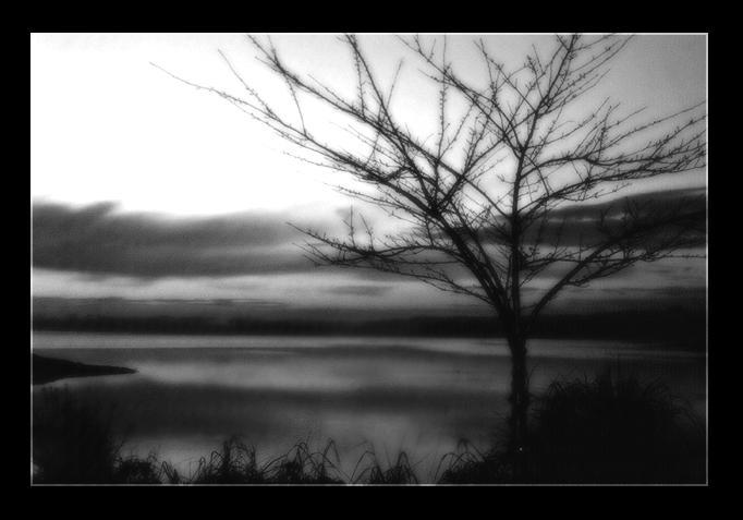 Black and White by leeru