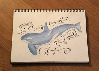 Orca by freespirit115