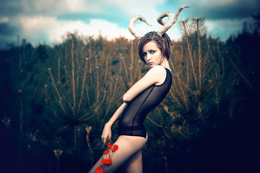 faun by snolover