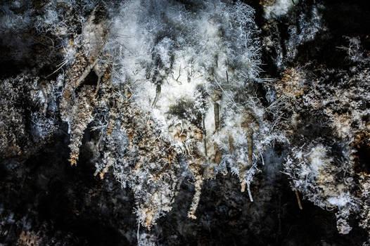 Is Zuddas cave