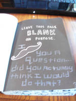 Wreck this Journal: leave this page blank by heather24242