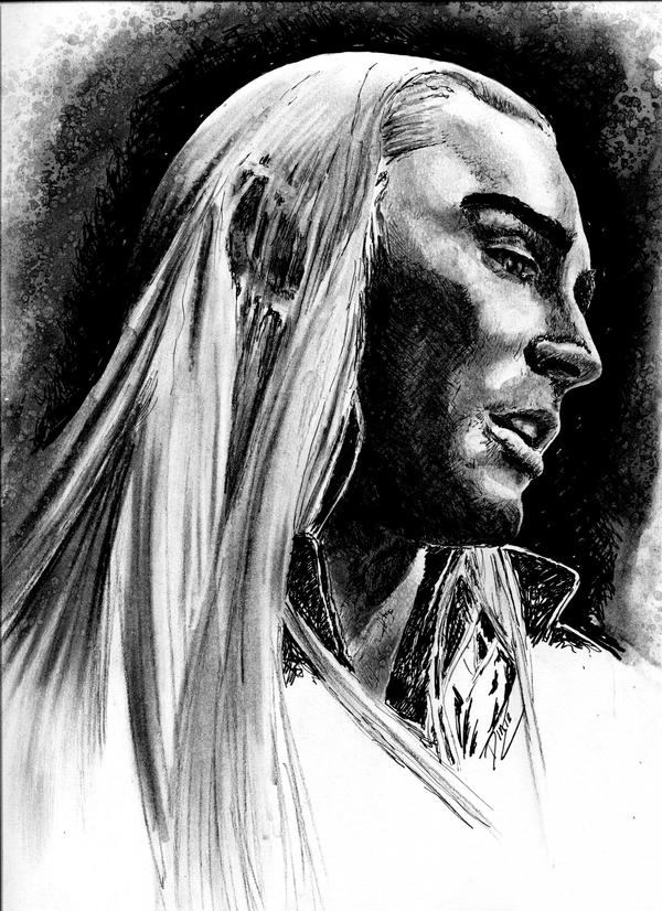 elven king by Dinie1971