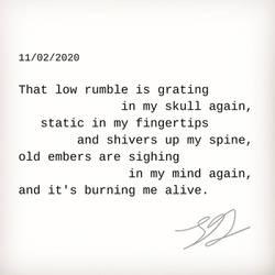 11/02/2020