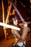 Shingeki no Kyojin : Mikasa Ackerman