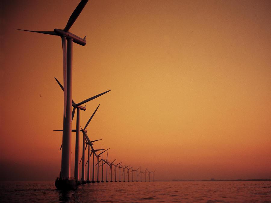 Wind farm a summer evening