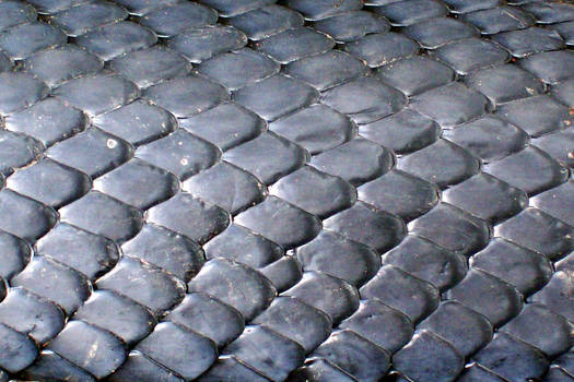 Snake scales_texture