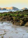 Background_beach rocks_I