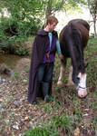 Medieval Lord_and_Horse