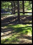 River Oaks_3