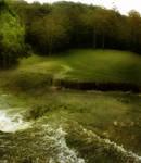 WaterField_1