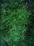 Emerald Leafy Texture
