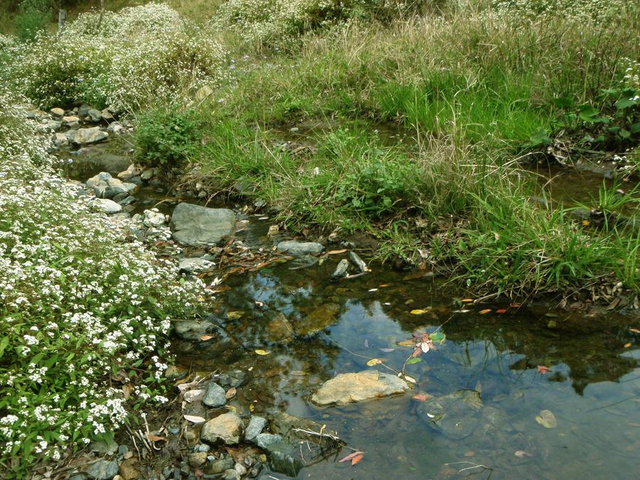 meadow creek dating Frontier formation:  judd shale member (ut), longwall sandstone member (ut), /meadow creek  biostratigraphic dating revised, belle fourche.
