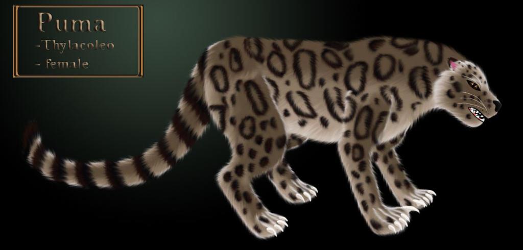 Cs: Puma - COSAM by LadyAlluvia