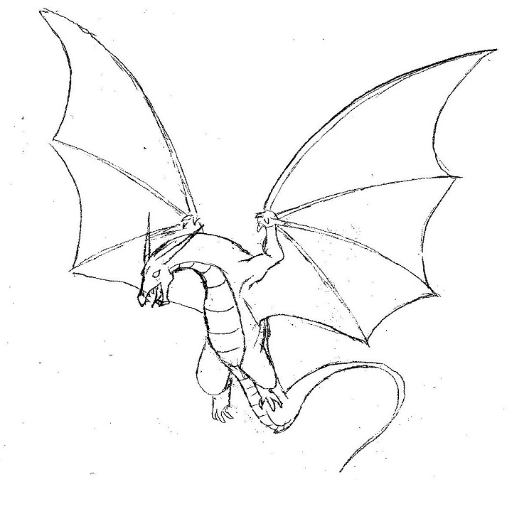 Flying dragon by ShelleynEasy Fire Breathing Dragon Drawings