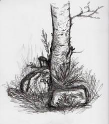 Tree and stones