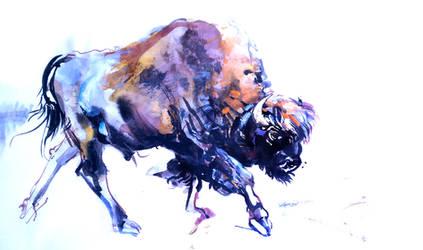 Buffalo by Razriel