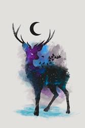 Deer Galaxy