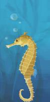seahorse-practice-1