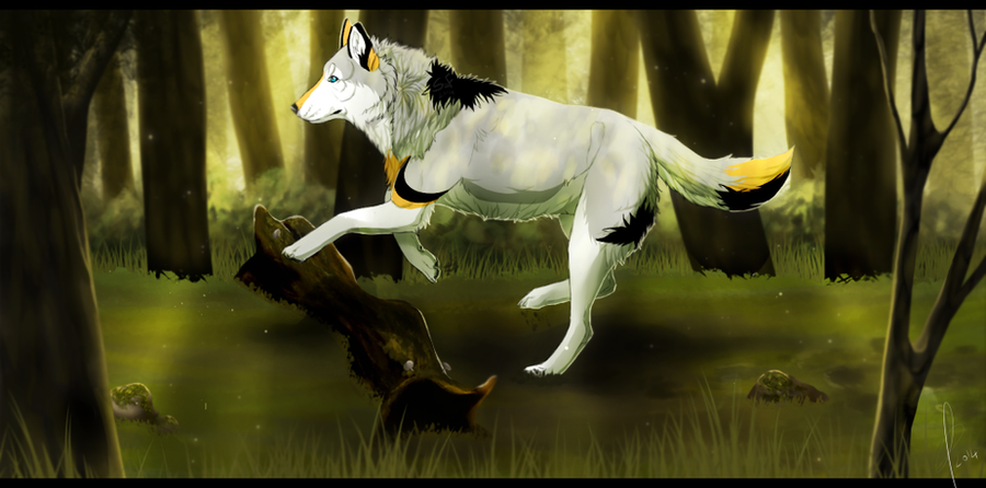 :Magic Forest - Commission for Soyala-Silveryst by StormAndFreedom