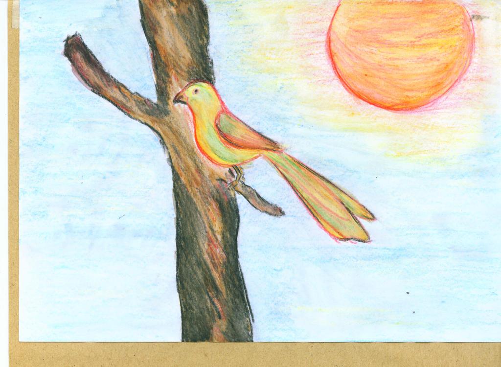 Scan Gambar Burung Pian by Sopian