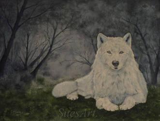 Night Watcher. by SueMArt