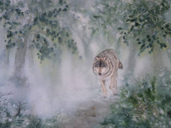 The Lone Wolf. by SueMArt