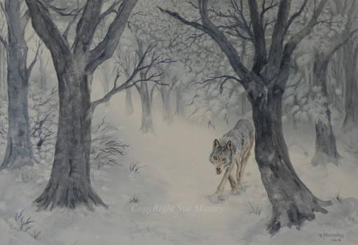 Winter Wolf.